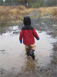 puddle1.jpg